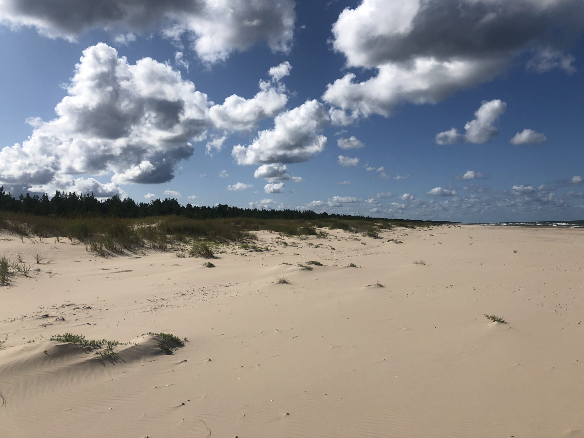 Sandstrand und Dünen mit Wolken am blauen Himmel in Lettland