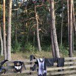Campingplatz Kempingas auf der kurischen Nehrung