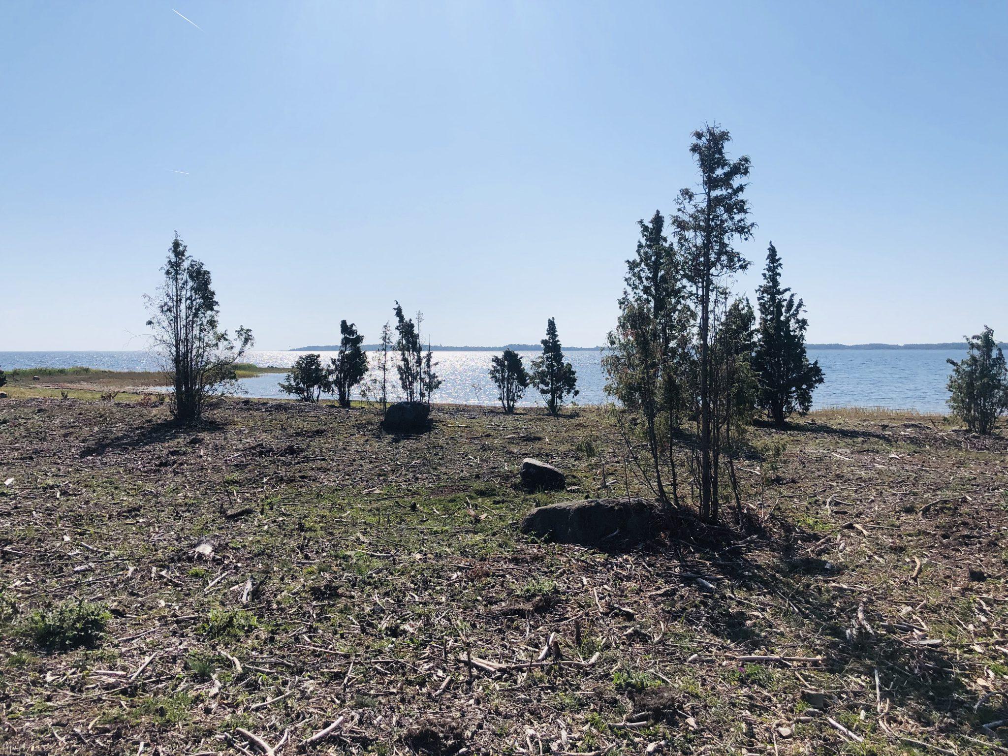 Wandern auf dem Naturpfad bei Ristna
